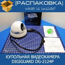 DigiGuard DG-2124P