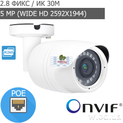 Уличная IP камера Partizan 5.0MP IPO-5SP SE 1.0 (5 MP)
